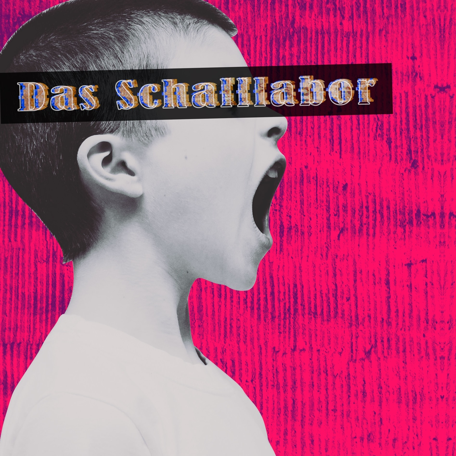 Music Student Henri Falk on the Evolution of Performance Initiative Das Schalllabor
